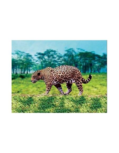 Kieszonkowy fotoprojektor – zwierzęta