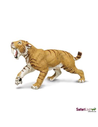 Tygrys szablozębny