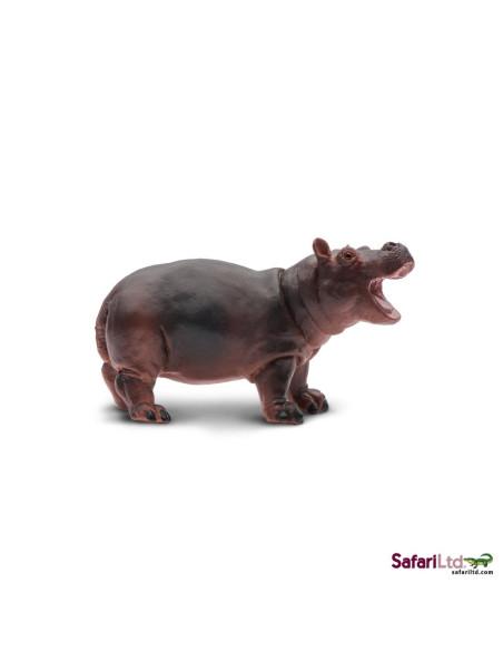 Młode hipopotama nilowego