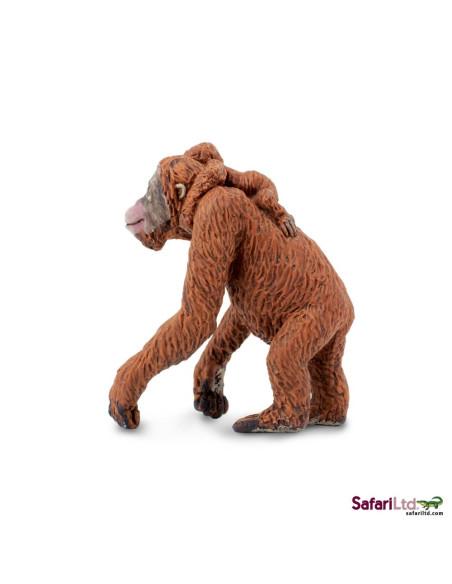 Orangutan z młodym