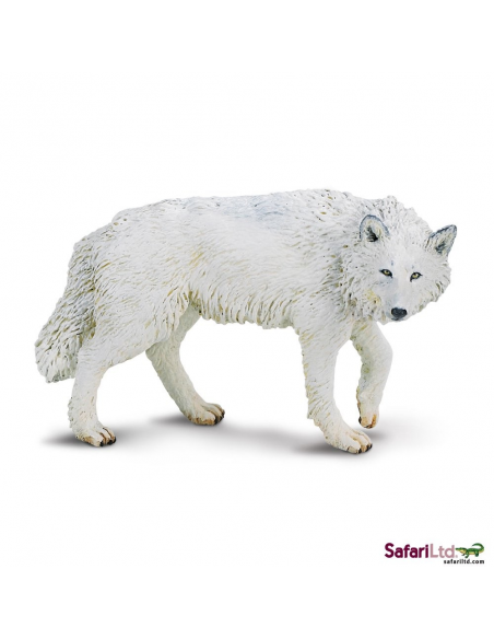 Wilk polarny