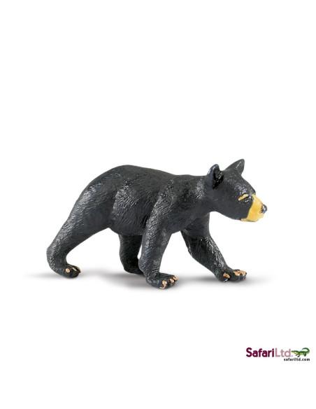 Młode niedźwiedzia czarnego
