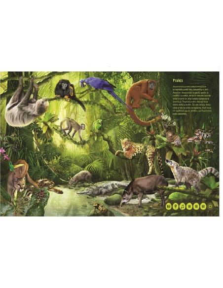 Świat zwierząt – Magiczne czytanie
