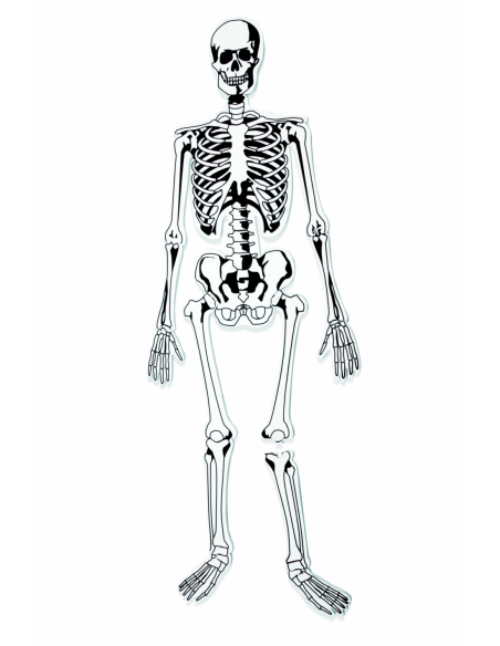 Puzzle z pianki – szkielet