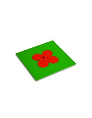 Nienhuis - Mała koniczyna