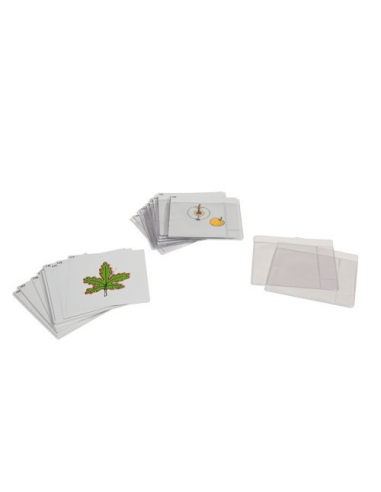 Nienhuis - Karty botaniczne - zestaw III