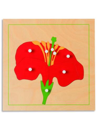 Nienhuis - Puzzle botaniczne - kwiat