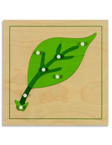 Nienhuis - Puzzle botaniczne - liść