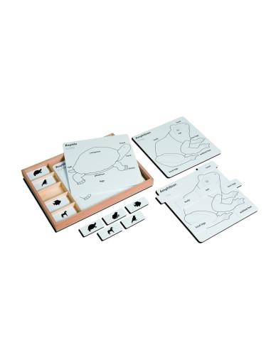 Nienhuis - Zwierzęta puzzle - zadania