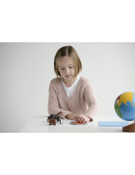 Nienhuis - Kontynenty - pudełko ze zwierzętami