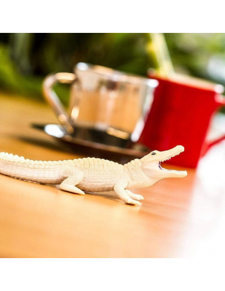 Biały aligator