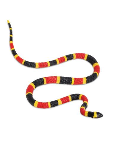 Młode węża koralowego arlekina