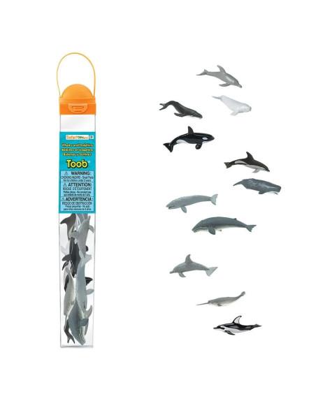 Tuba - Wieloryby i delfiny
