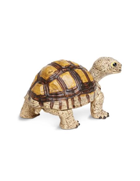 Żółwiątko