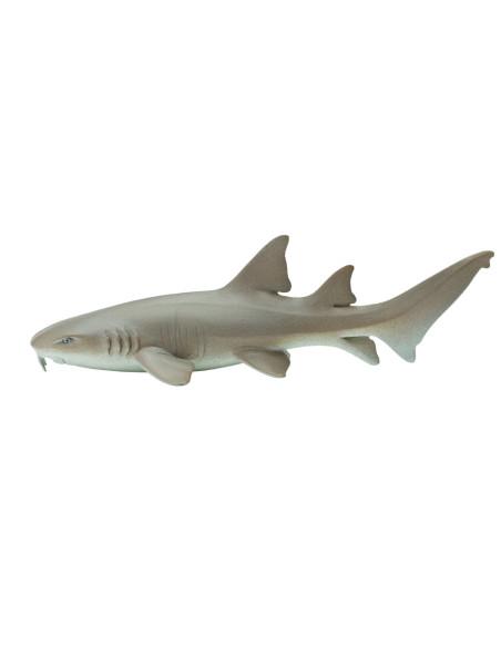 Rekin wąsaty