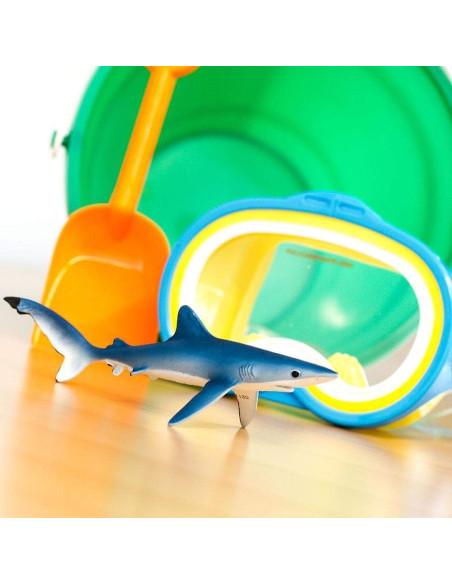 Żarłacz błękitny