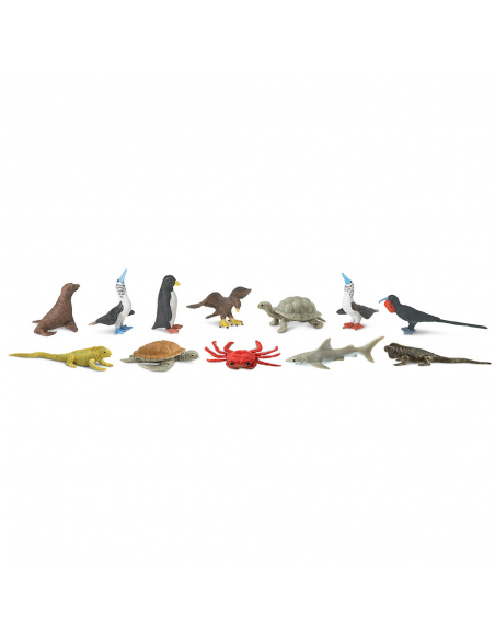 Tuba - Zwierzęta na Galapagos
