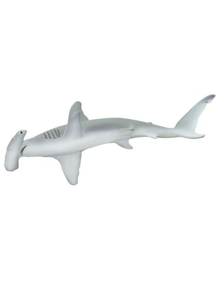 Rekin młot w skali