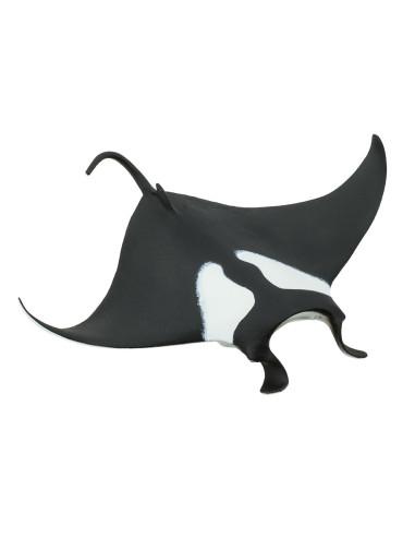 Manta - diabeł morski