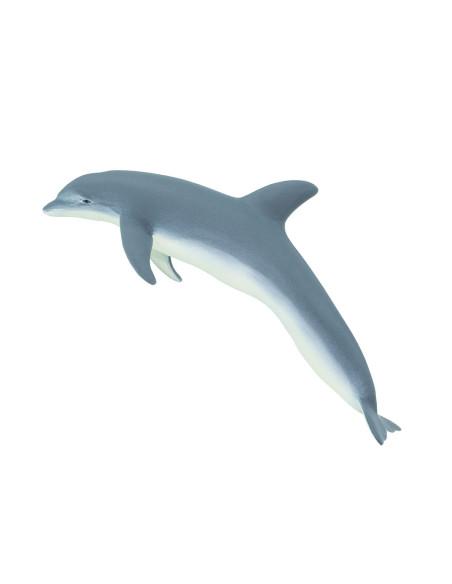 Delfin butlonosy