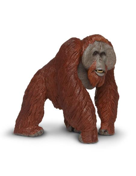 Orangutan skala
