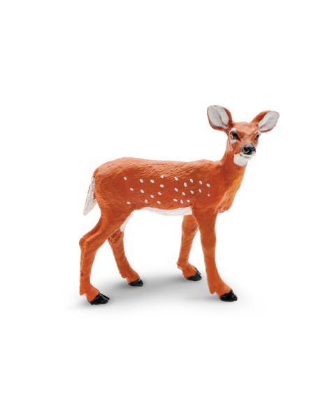 Młode jelenia wirginijskiego