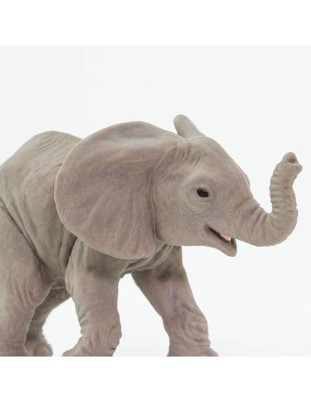 Młode słonia afrykańskiego