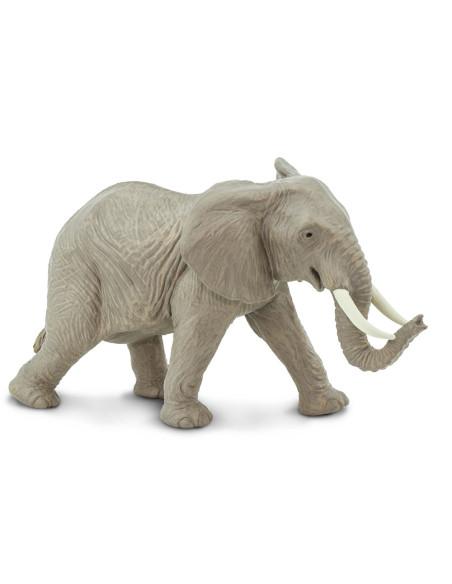 Słoń afrykański