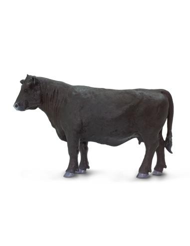 Krowa rasy Angus