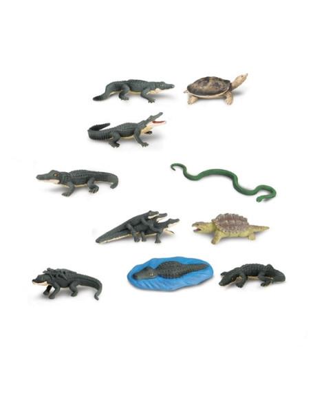 Tuba - Aligatory